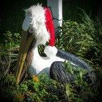 Pelican statue painted and with a santa hat on for the holdidays in Saint Petersburg Fl