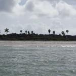 Shell Island Fl