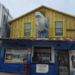 John's Pass Village store front with a greatwhite shark head coming out of the top.