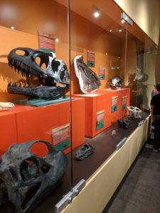 North Museum